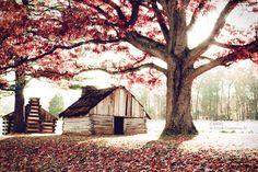 >> HOME SWEET HOME