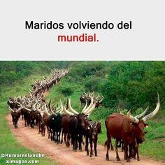 Puedes encontrar mas de 200 imagenes graciosas en nuestra web para compartir! - - - - - - - - - - - - tags: - - - - - - - - - ignoren #humor #memes #momos #memesespañol #momosespañol #imagenesgraciosas #Frases #imagenesdeamor #comedia #frase #memes2018 #comedia #humorlatino #momos4k #humornegro #chistes #momazo #momo #mexico #argentina #videos #videosgraciosos #viral #videoslocos #video #bromas #fails