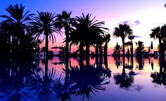 cool purple paradise wallpaper Check more at http://www.finewallpapers.eu/pin/19670/