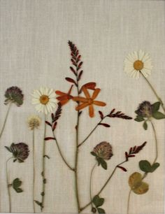 Hand Pressed Botanicals Wildflowers on Linen by BotanicaPacifica, $120.00