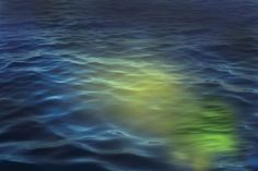 """UFOs, USOs Have Been Seen Under The Waters Near Catalina Island, California 