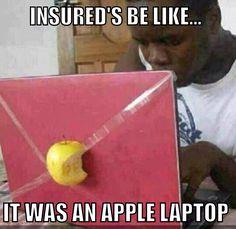 Insurance humor...fraud via padding inventory!