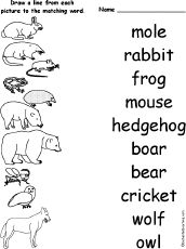 English worksheet Forest animal pictionary forest