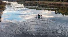 """305 kedvelés, 2 hozzászólás – National Geographic Hungary (@natgeomagazinehu) Instagram-hozzászólása: """"Esti csordogálás, a kis-balatoni tájban. Lex Mihály felvétele."""" Waves, Outdoor, Instagram, Outdoors, Ocean Waves, Outdoor Games, The Great Outdoors, Beach Waves, Wave"""