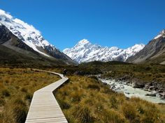 The Hooker Valley Track: The Best Half-Day Hike in New Zealand