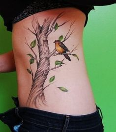 bird and tree