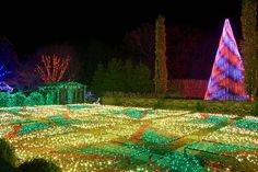 WINTER LIGHTS at the NC Arboretum is a spectacular display of 50,000 of LED lights throughout their famous gardens with a backdrop of holiday music. Stroll through the gardens, enjoy a cup of cocoa, cider or beer & food at the Arboretum's Savory Thyme Café buffet (reservations recommended). Romantic Asheville photo Winter Lights Tickets $18 to $15; children 4 & under are free.   Open nightly from 6 to 10PM through January 1, 2017. ncarboretum.org/exhibits-events/winter-lights/
