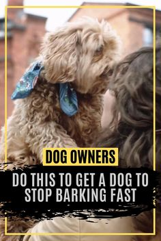 Dog Names Discover If your dog is barking too much try this device. Cute Little Puppies, Cute Dogs And Puppies, Maltese Poodle Puppies, Terrier Puppies, Pomeranian Puppy, Chihuahua Dogs, Bulldog Puppies, Terrier Mix, Pet Dogs