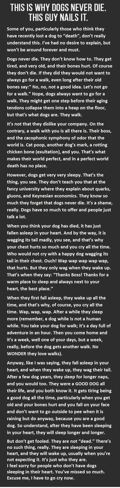 Have you ever had a dog who passed away on you? You may want to read this.