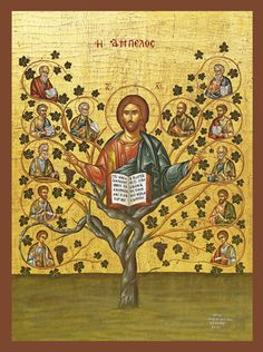 """In this unusual icon we see that Christ is the Tree of Life and the Apostles are the branches that went out to preach the Word to the ends of the earth.  Jesus Himself said, """"I am the true vine and ye are the branches.""""  (John 15:5)  The Lord's arms are outstretched as He gives the blessing as a bishop in the Orthodox Church with the fingers of both hands forming the the Greek letters """"IC XC"""" which is an abbreviation for Jesus Christ.  In His lap is an open Gospel Book and in His halo are…"""