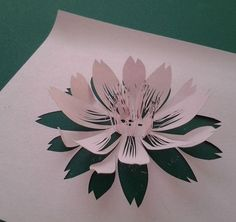 FMC - its delicacy is masterpiece! The Ultimate Cutting Art Paper Flower Art, 3d Paper Art, Paper Pop, Flower Crafts, Diy Paper, Paper Flowers, Paper Crafts, Kirigami, 3d Cuts
