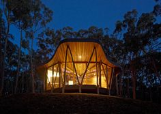 """Trunk House. I think it looks like a wishbone house. Idea for the wood pillars came from animal bones. Talk about """"organic architecture."""" Gorgeous."""