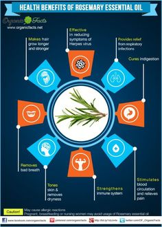 Health Benefits of Rosemary Essential Oil ~ Makes hair grow, Reduces symptoms of herpes virus, Relief from respiratory infections, Cures indigestion, Stimulates blood circulation, Strengthens immune system, Tones skin & removes dryness, Removes bad breath. *Avoid if pregnant or nursing.