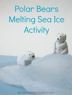 Polar Bear Activity : Teaching kids about the impact of rising global climate and melting sea ice on polar bears. A great STEM activity for kids. Science Activities For Kids, Animal Activities, Interactive Activities, Preschool Activities, Nature Activities, Summer Activities, Polar Bear Climate Change, Bears Preschool, Preschool Winter