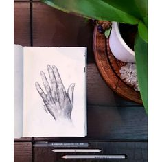 Hand study . . . #sketch #sketchbook #anatomy #body #illustration #rendering #graphic #design #artistic #talents #lebaneseartist #anaba3ref #animation #livelovearts #pencil #charcoal #artsy #study #artist #artwork #hands #fingers #etsy #nace #nawden #nationalart