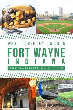 The Weekend Getaway You've Overlooked: A travel guide to Fort Wayne, Indiana. Near Chicago, Detroit, and Cincinnati, it's a fun midwest destination that captures a perfect blend of city, nature, and local flavors! Here are the top things to do in Fort Wayne.