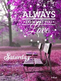 Good Morning Picture, Morning Pictures, Saturday Greetings, Outdoor Decor
