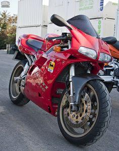 Ducati 916, Ducati Superbike, Motogp, Porsche, Audi, Triumph Motorcycles, Ducati Custom, Mopar, Motocross