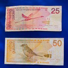 Curacao Money. Guilder. Colorful bills.