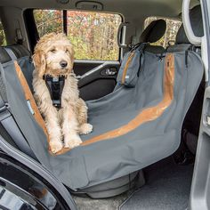 The Kurgo Wander Hammock is a must for travelling with your dog. Protect your car seats from muddy paws with this waterproof car mat. Dog Hammock For Car, Dog Belt, Back Seat Covers, Dog Car Seats, Dog Travel, Otter, Gliders, Training Your Dog, Best Dogs