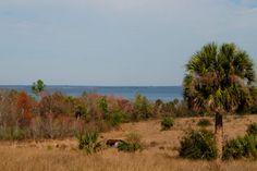 Hikes near Mount Dora | Florida Hikes!