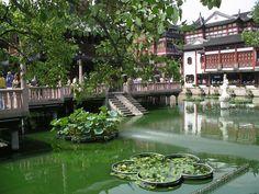 El Jardín Yuyuan,Shanghai. Uno de los parques más famosos de#China,data de la Dinastía Ming.Visita obligada en Shanghai para escapar del bullicio de la gran ciudad.   www.maimaiwenhua.com    #China #ArteChino #CulturaChina #ArteOriental #Asia