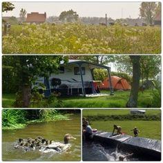 Een overzicht van heel veel leuke idyllische campings in Nederland met kids: Minicamping Hayema Heerd