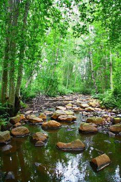 .My son and I walking thru the creek
