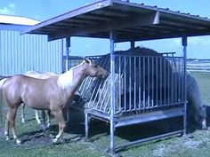 Save time & money with Klene Pipe's hay feeders for horse, cattle & other livestock. We also carry run in horse shelter kits, portable shade structures and mineral feeders. Contact us for more information or for shipped Pricing.