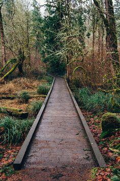 Tualatin Hills Nature Park - Beaverton, Oregon  