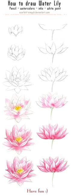 131 - Cómo dibujar y pintar Waterlily por Scarlett-Aimpyh
