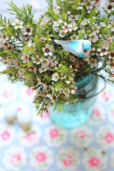 Wax flower - available for Scottish brides in February. Contact The Stockbridge Flower Company for more details.