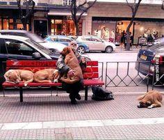 Faith in Humanity...