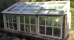 Use old windows to build greenhouse. Antique Windows, Old Windows, Recycled Windows, Green Play, Greenhouse Shed, Gazebo Pergola, Hardwood Furniture, Down On The Farm, Unique Gardens