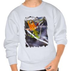 Crimson Columbine Sweatshirts by Florals by Fred #zazzle #gift #photogift