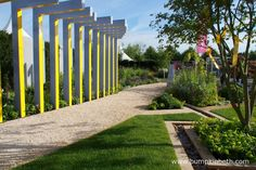 The Scotty's Little Soldiers Garden was designed by Graeme Thirde and built by Harrington Potter. Memorial Plants, Rhs Hampton Court, Annual Flowers, Flower Show, Hedgehogs, Fences, Horticulture, Yellow Flowers, Soldiers