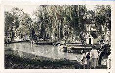 Los Viveros, estanque de los patos, Valencia