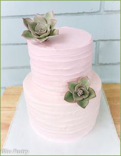 sweet and simple rustic iced buttercream wedding cake with gumpaste succulents  -- Bliss Pastry, Deland, Florida https://www.facebook.com/pages/Bliss-Pastry/123883354373830