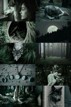 wolf witch aesthetic – Candle Making Witch Aesthetic, Aesthetic Collage, Wolf Girl, Teen Wolf, Magick, Witchcraft, Imagenes Dark, Occult, Faeries