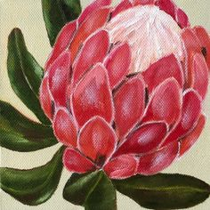 Image result for protea painting Silk Painting, Watermelon, Rose, Beach, Flowers, Plants, Image, Floral, Roses