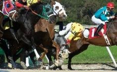 Drugged Up Horses Race to Their Deaths: TAKE ACTION! Sign the petition to end drugging of race horses!!