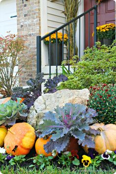 outdoor #fall decorating - Pick up some fall/winter cabbage to plant this weekend at the Farmer's Market!