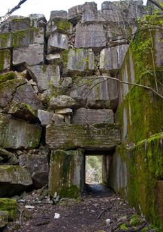 Meads Quarry, Knoxville, TN - Why have I never been here?! And I LIVED there for 4 YEARS!