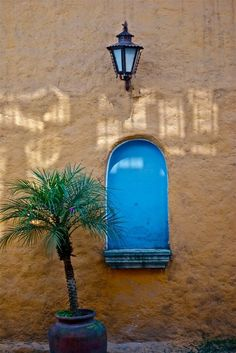 I never get tired of the colours of houses in Mexico. The Beautiful Country, Mexican Folk Art, Architectural Elements, Fences, House Colors, Planting Flowers, Art Decor, Spanish, Walls