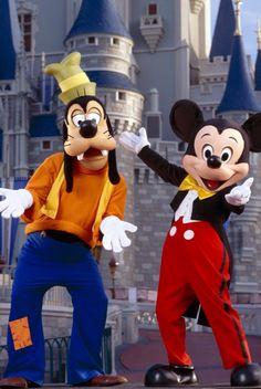 Mickey & Goofy