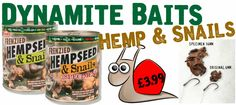 Dynamite Hemp & Snails Tins - Available now at Fishing Republic