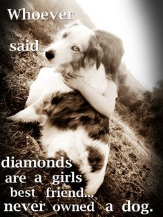 if offered a truckload of the worlds finest diamonds, in return for living the rest of my days without a dog.....I would choose dog, hands down, would not even have to pause to think about it.