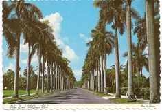 1000 images about fort myers fl memories on pinterest forts florida and shell factory. Black Bedroom Furniture Sets. Home Design Ideas