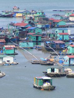 Vietnam/ Halong Bay/ cat-ba-island - Floating Village