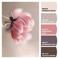 Paint colors from ColorSnap by Sherwin-Williams Plum Color Palettes, Pink Color Schemes, Colour Pallette, Bedroom Color Schemes, Bedroom Paint Colors, Wall Colors, Country Paint Colors, French Country Colors, Paint Colors For Home